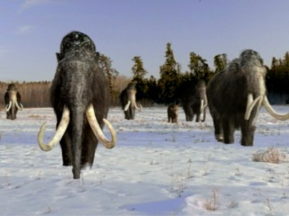 «Прогулки с чудовищами» | 6. «Путешествие мамонта»
